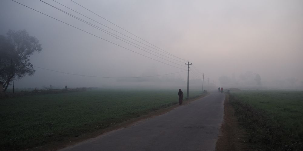 Early morning fog on a road near