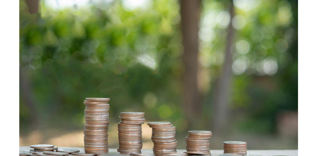 Despite subsidised loans, red tape and poorly formulated business plans hinder entrepreneurship